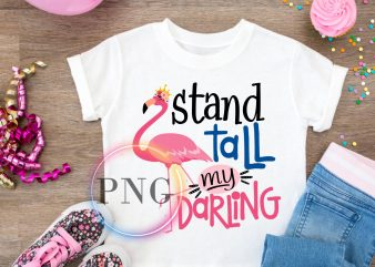 Flamingo Stand tall my Darling T shirt design PNG