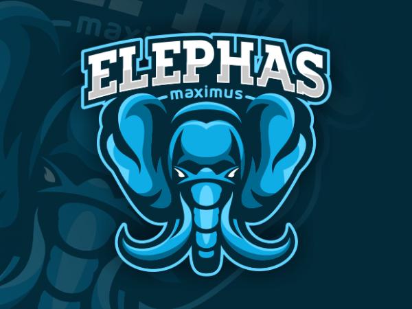 Elephas Maximus t shirt design to buy