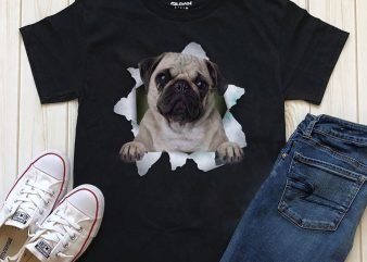 Dog In T-shirt- 20 Popular Dog Breeds