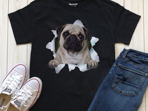 Dog In T-shirt- 20 Popular Dog Breeds