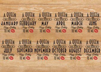 Birthday Queen t-shirt Bundle 12 month