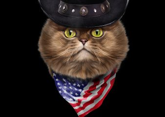 Fluffy Persian Cat in Cowboy Hat and Flag of USA Bandana PNG Download – Funny Cat Kitten Digital Files t shirt graphic design