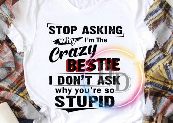 Stop asking why I'm the Crazy Bestie I don't ask why you're so stupid T shirt