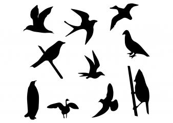 Bird svg,Bird png,Bird cut file,Bird vector,Bird design,Bird fly vector,Bird svg file t shirt design to buy