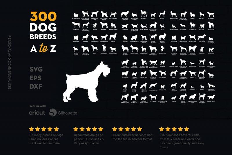300 Dog Bundle A to Z vector t shirt design