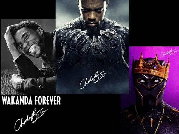 Rip Chadwick Boseman Png Black Panther Png Black Father Png Digital Download Buy T Shirt Designs