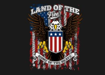 Land of the free home of the brave 2
