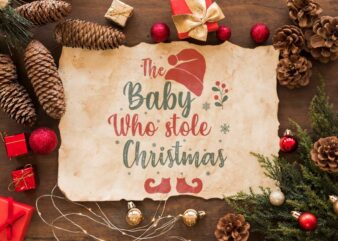The Baby Who Stole Christmas Gift Idea Diy Crafts Svg Files For Cricut, Silhouette Sublimation Files