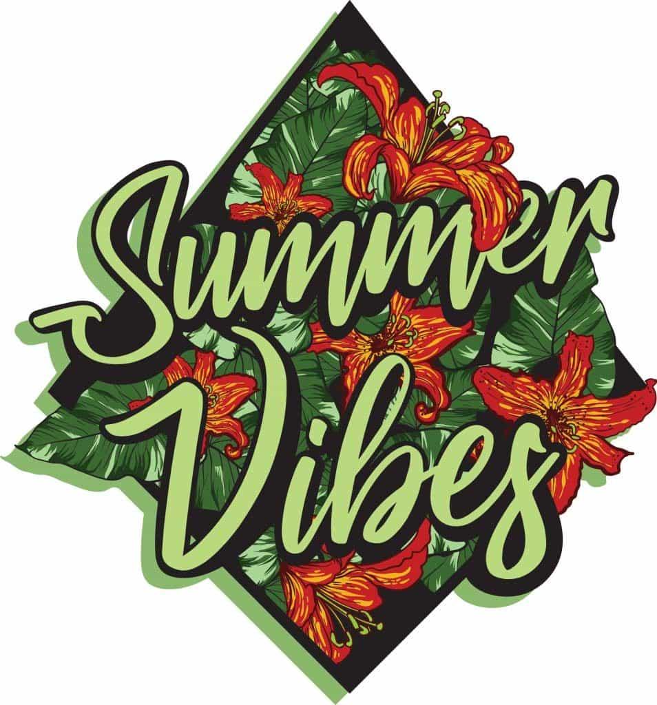 Summer vibes vector t shirt design